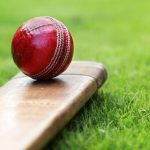 Which Cricket Fielding Positions are Used in Fantasy Sports?